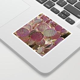 Purple Cactus Sticker