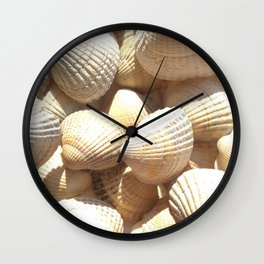Sea Shells Collection Wall Clock