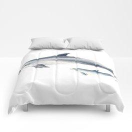 Bottlenose dolphin Comforters