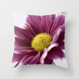 Colour Impact Throw Pillow