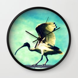 Ibis Bird Wall Clock