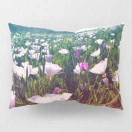 Field of Pink Evening Primrose - Texas Wildflowers Pillow Sham