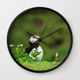 Puffin from Ireland  (RR 238) Wall Clock