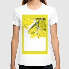 Twig with young green leaves on white T-shirt