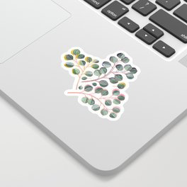 Simple Silver Dollar Eucalyptus Leaves Sticker