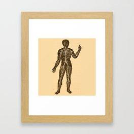 Circulatory system. Framed Art Print