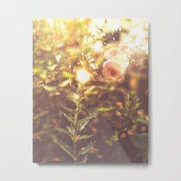 Visual Healing Metal Print