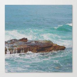 Dripping Shoal Canvas Print