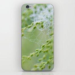 Tiny Spiderweb iPhone Skin