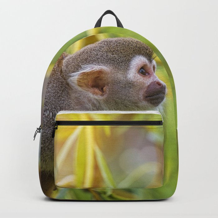Squirrel Monkey wild animal in sunlight Backpack