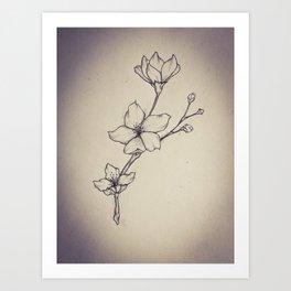 Study of Blossoms Art Print