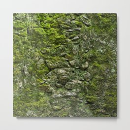 Green wall Metal Print