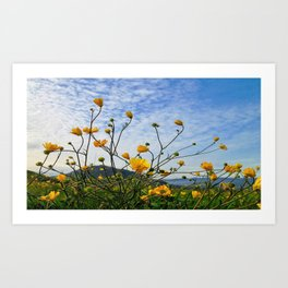 joyful flowers, blue sky Art Print