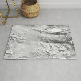 Moon Surface -Grey and White- Rug