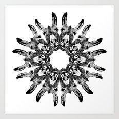 Donkey Kaleidoscope  Art Print