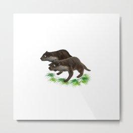 Anisue's Otter. Metal Print