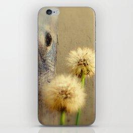 Tree Hugging Dandelions iPhone Skin
