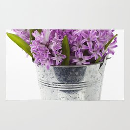 Beautiful Hyacinths in vase over white Rug