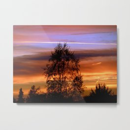 Her Warmth Metal Print