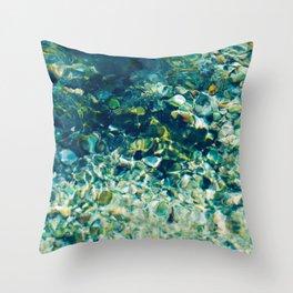 Ichetucknee Springs Throw Pillow