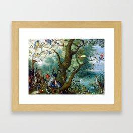 Jan van Kessel the Elder Concert of Birds Framed Art Print