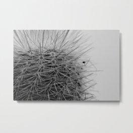 Prickly Pineapple Succulent Metal Print