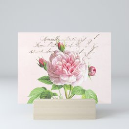 Paris Rose Mini Art Print