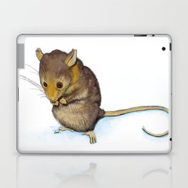 Mountain Pygmy-possum (Burramys parvus) Australian Native Laptop & iPad Skin