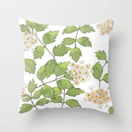 Spirea cantoniensis Throw Pillow
