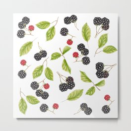 Blackberry Season Metal Print