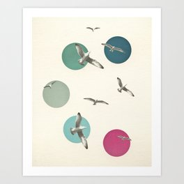 Circling Art Print