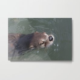 Otterly Adorable Metal Print