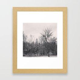 Raymerville Framed Art Print