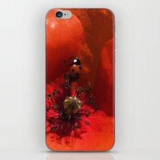 Ladybug Poppy Photography iPhone & iPod Skin