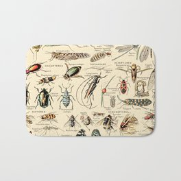 Vintage Insect Identification Chart // Arthropodes by Adolphe Millot XL 19th Century Science Artwork Bath Mat