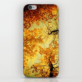 We Are Starlight, We Are Golden iPhone Skin