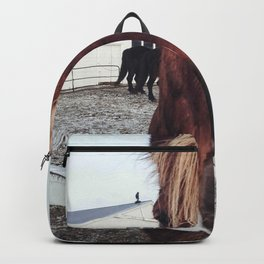 Brown horse face Backpack