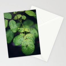Raindrops on Green Leaves Stationery Cards