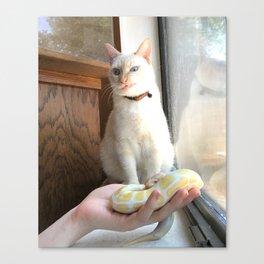 Cat No Banana Snek Canvas Print