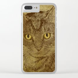 Brown Tabby Clear iPhone Case