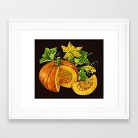 pumpkin Framed Art Prints featuring Pumpkin by ElenaTerrin