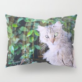 Cat to Rule the World with Pillow Sham