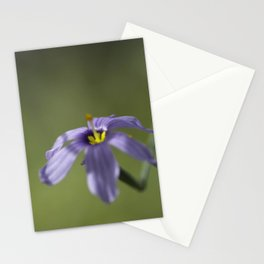 Blue-Eyed Grass Stationery Cards