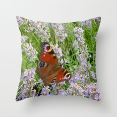 A Peacock Butterfly On A Laveder Bush Throw Pillow