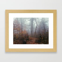 Appalachian Trail in Fog Framed Art Print