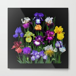 Iris Garden - on black Metal Print