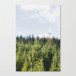 St. Helens. Canvas Print