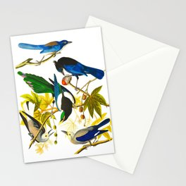 Yellow-billed Magpie Bird Stationery Cards