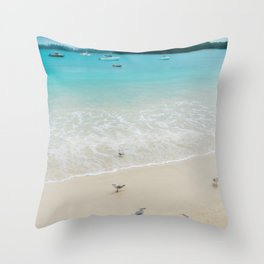 A group of seagulls on the beach at Kuto Bay, New Caledonia. Throw Pillow