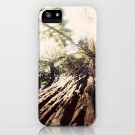 Too Tall Tree iPhone Case